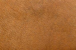cuir tanne